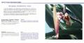 Le guide de phytothérapie créole
